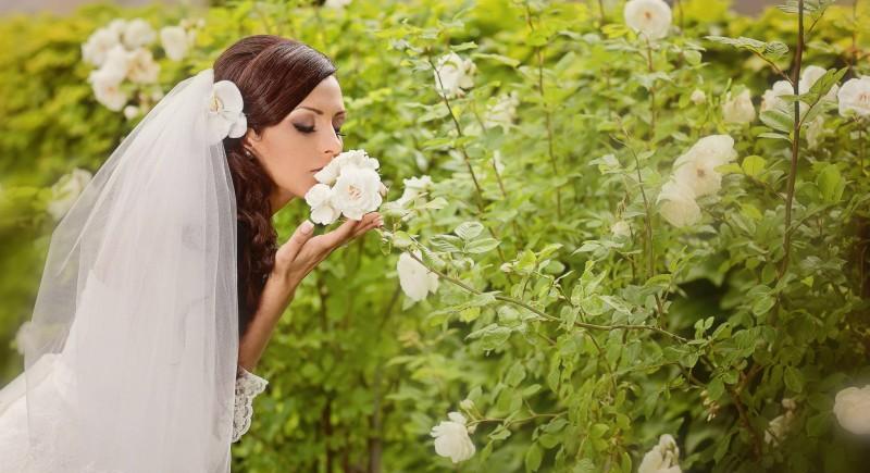 Hochzeit Belgien